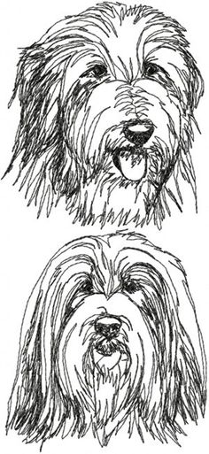Bearded Collie svg #3, Download drawings