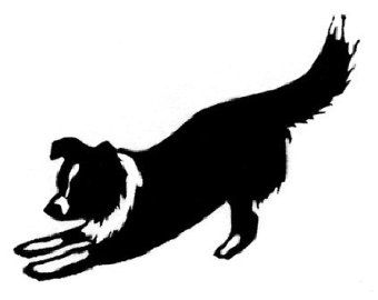 Bearded Collie svg #15, Download drawings