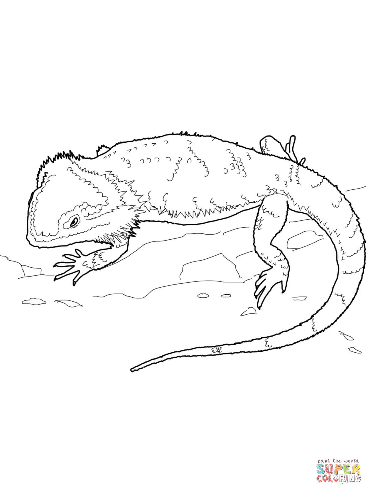 Bearded Dragon coloring #5, Download drawings