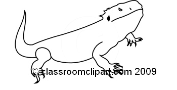 Bearded Dragon clipart #13, Download drawings
