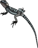 Bearded Dragon svg #12, Download drawings
