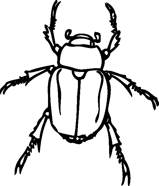 Beatle clipart #5, Download drawings