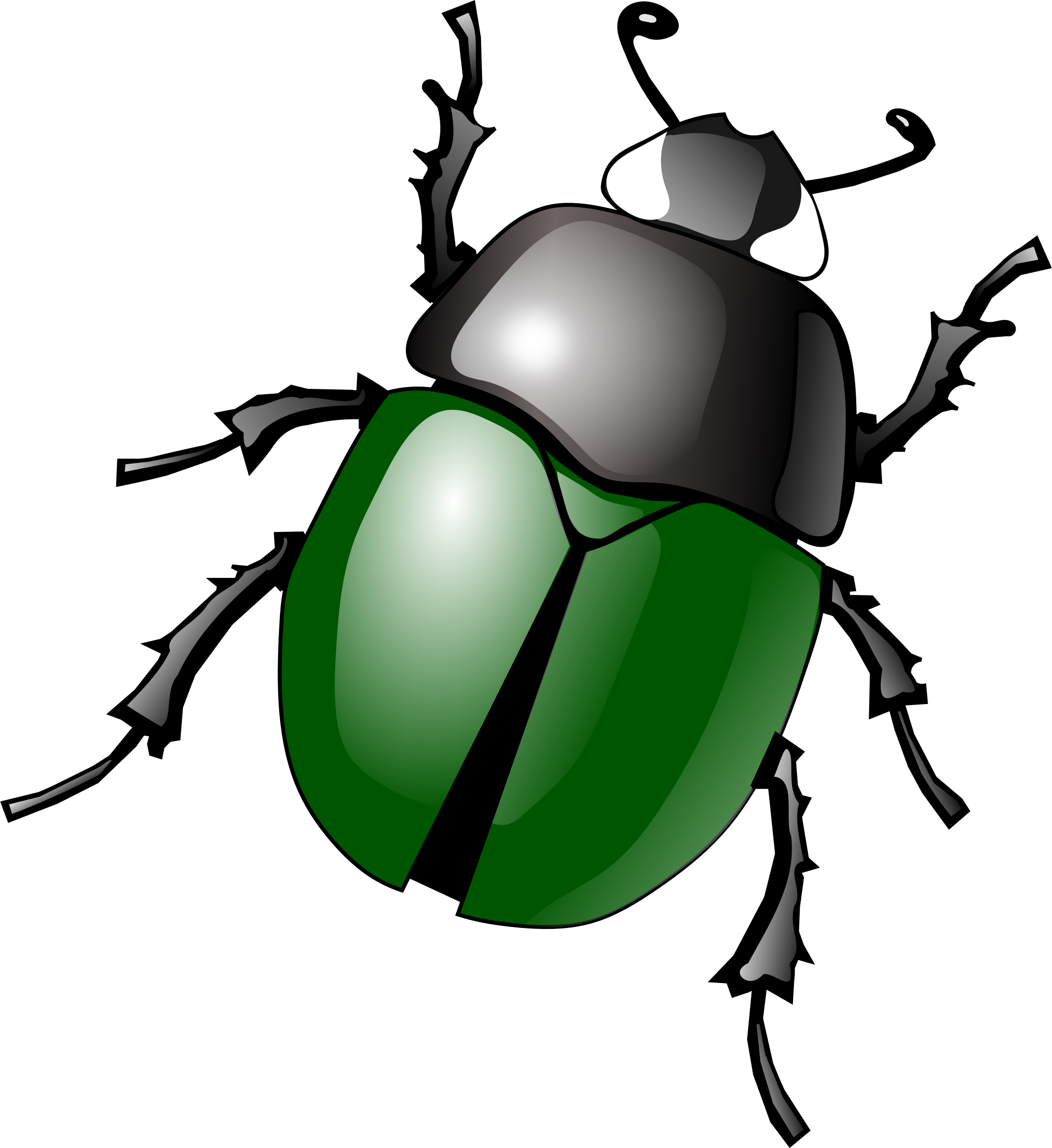 Beatle clipart #18, Download drawings