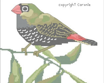 Beautiful Firetail clipart #18, Download drawings