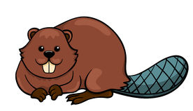 Beaver clipart #20, Download drawings