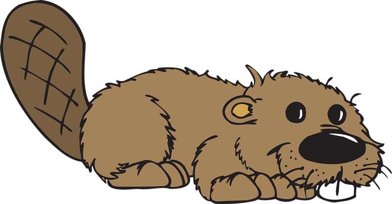 Beaver clipart #18, Download drawings
