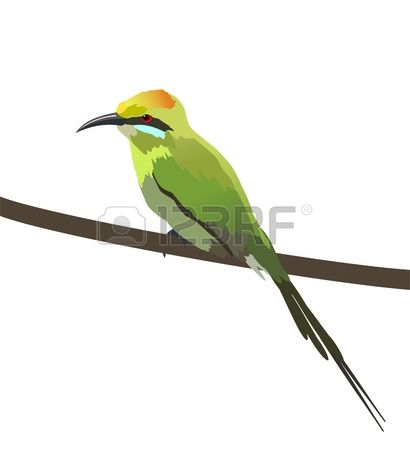 Bee-eater clipart #10, Download drawings