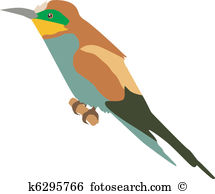 Bee-eater clipart #13, Download drawings