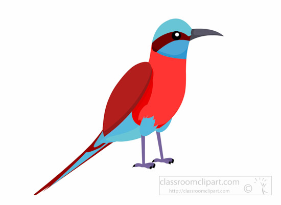 Bee-eater clipart #8, Download drawings