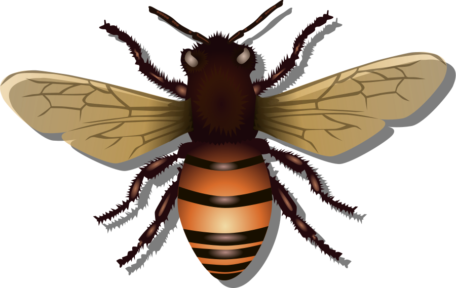Bees svg #1, Download drawings
