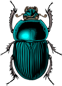 Beetles clipart #15, Download drawings