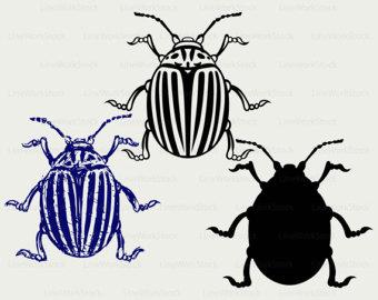 Weevil svg #13, Download drawings