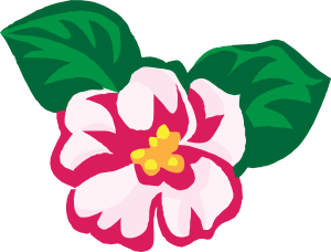 Begonia clipart #9, Download drawings