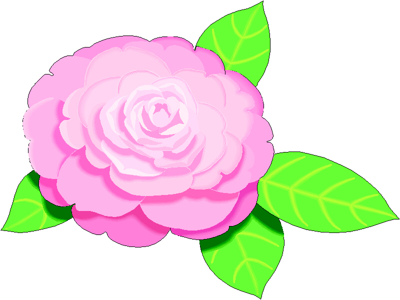 Begonia clipart #20, Download drawings