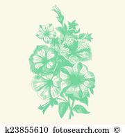 Begonia clipart #1, Download drawings