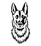 Belgian Malinois clipart #14, Download drawings