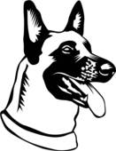 Belgian Malinois clipart #20, Download drawings