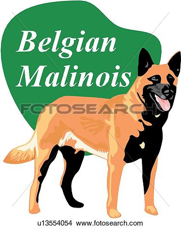 Belgian Malinois clipart #16, Download drawings