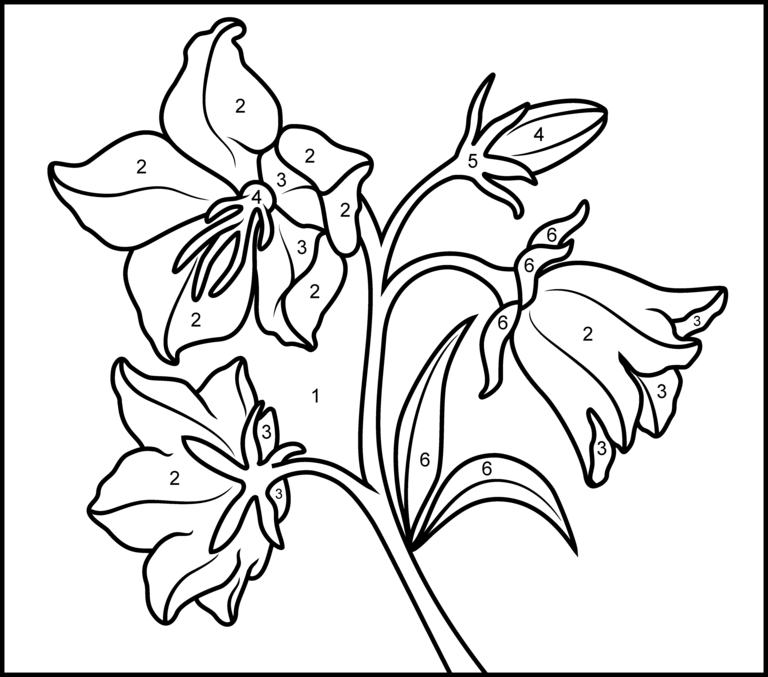 Bellflower coloring #1, Download drawings
