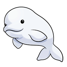 Beluga clipart #5, Download drawings