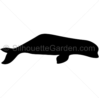 Beluga svg #7, Download drawings
