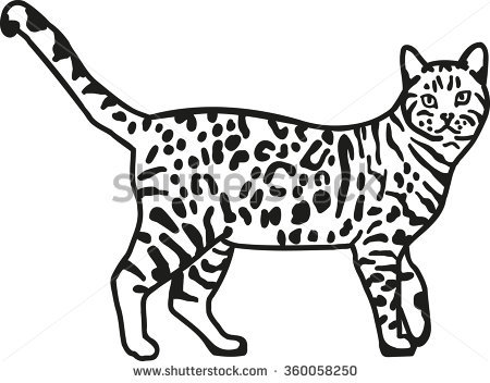 Bengal Cat clipart #12, Download drawings