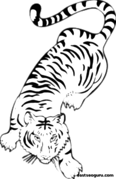 bangel tiger coloring pages - photo#19