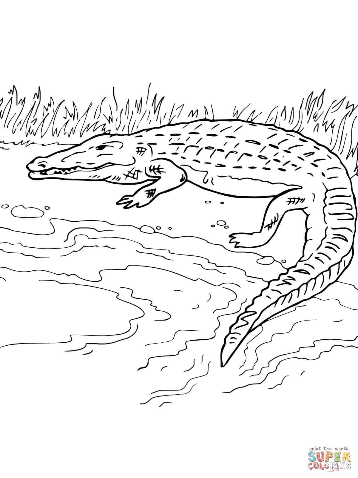 Berge coloring #6, Download drawings
