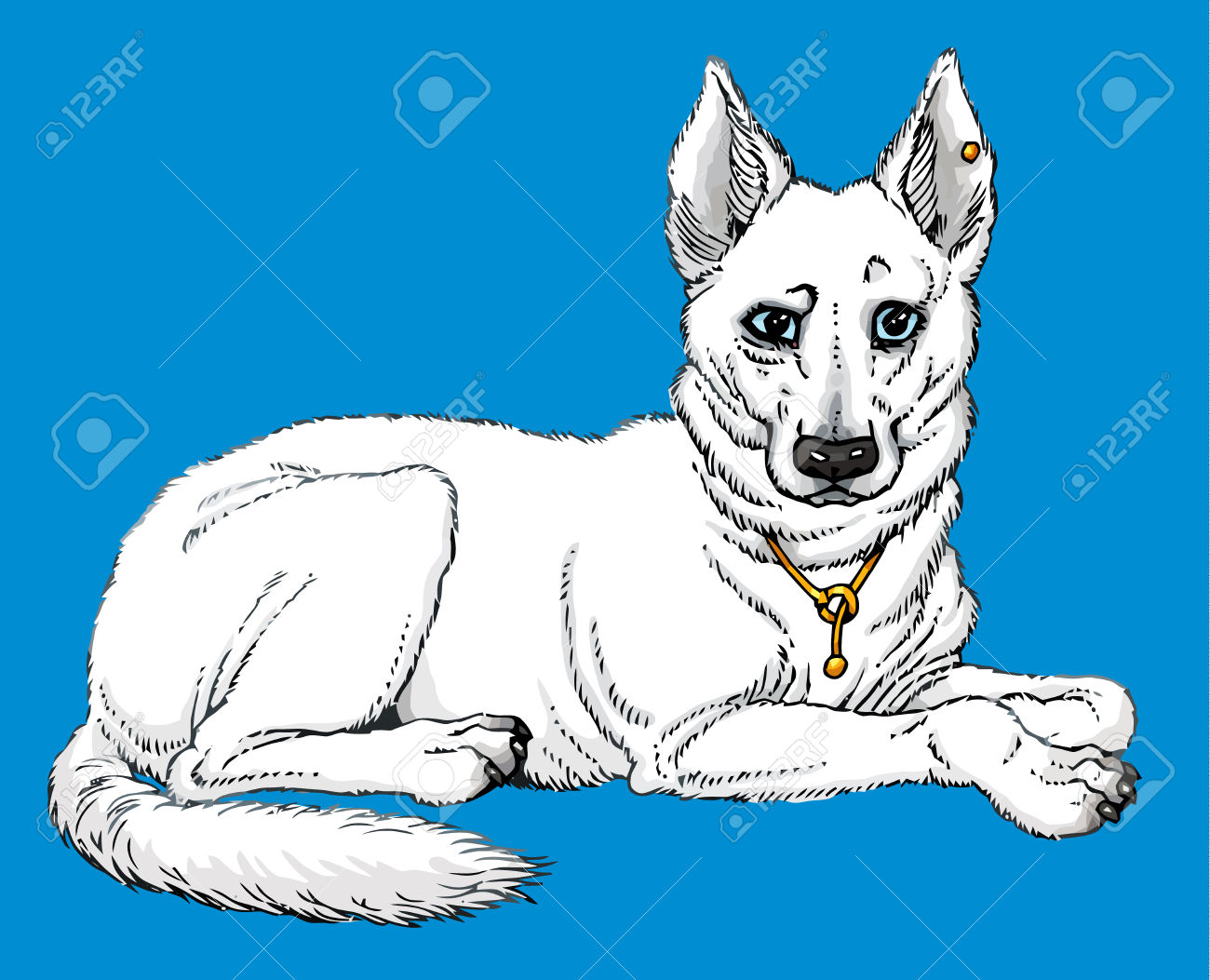 Berger Blanc Suisse clipart #2, Download drawings