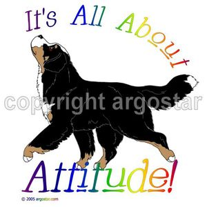 Bernese Mountain Dog clipart #17, Download drawings