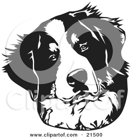 Sennenhund clipart #14, Download drawings
