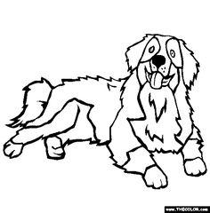 Bernese Mountain Dog coloring #6, Download drawings