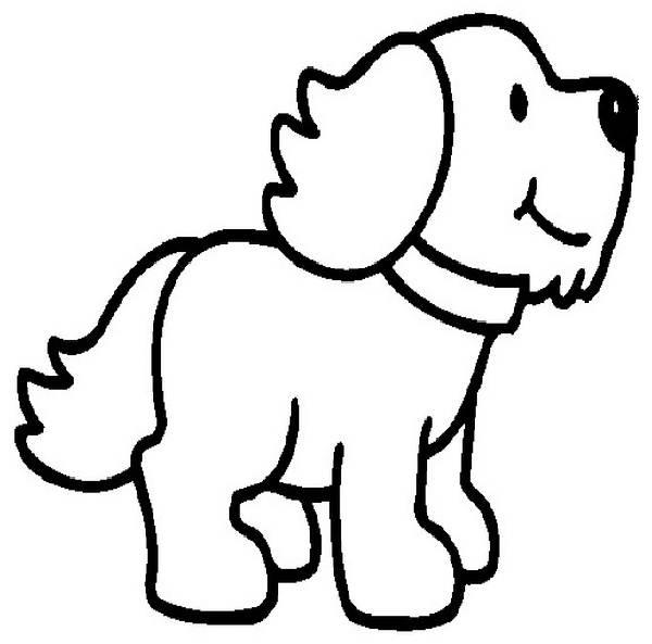 Bernese Mountain Dog coloring #13, Download drawings