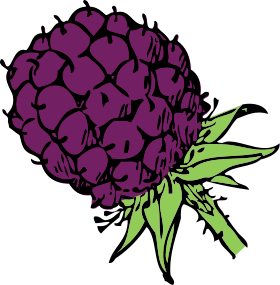 Berry clipart #12, Download drawings