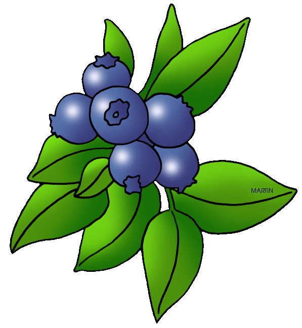 Berry clipart #20, Download drawings