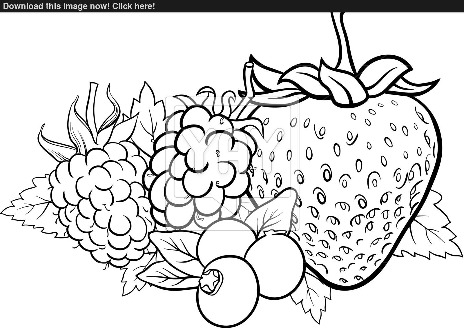 Berry coloring #18, Download drawings