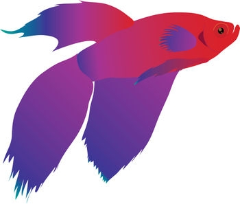 Betta clipart #2, Download drawings