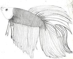 Betta coloring #16, Download drawings