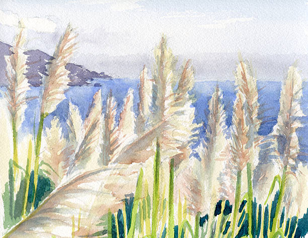 Big Sur clipart #16, Download drawings
