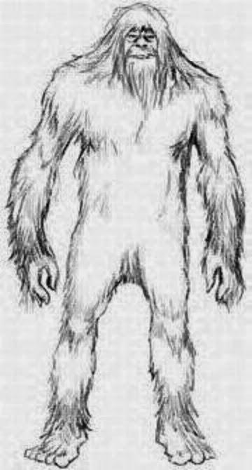 Bigfoot coloring #5, Download drawings