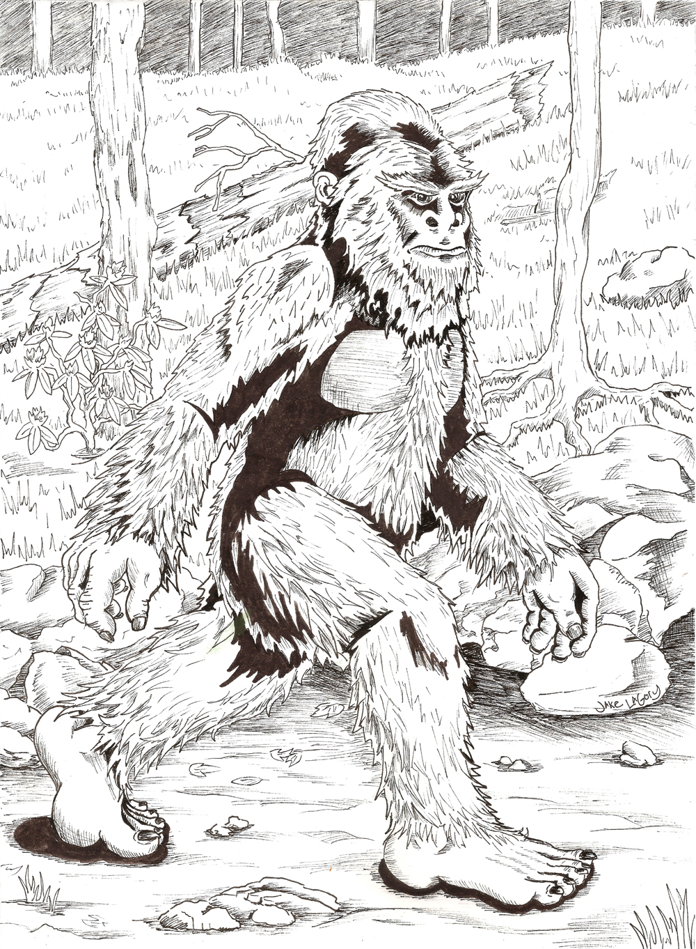 Bigfoot coloring #1, Download drawings