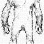 Bigfoot coloring #6, Download drawings