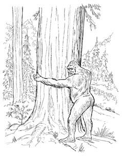 Bigfoot coloring #4, Download drawings
