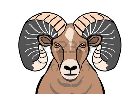 Bighorn Sheep clipart #1, Download drawings