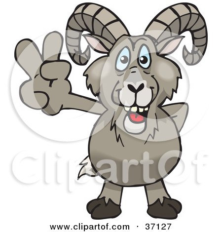 Bighorn Sheep clipart #7, Download drawings