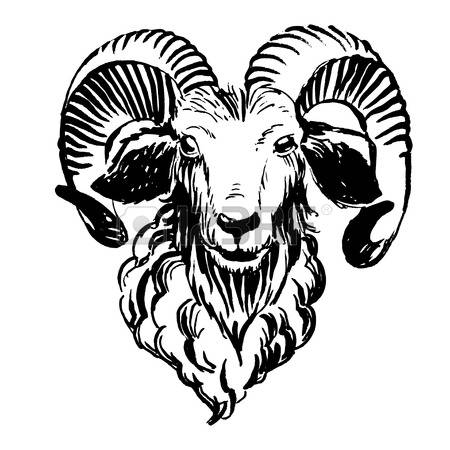 Bighorn Sheep clipart #10, Download drawings