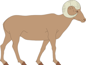 Bighorn Sheep clipart #2, Download drawings