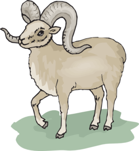 Bighorn Sheep clipart #4, Download drawings