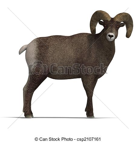 Bighorn Sheep clipart #5, Download drawings