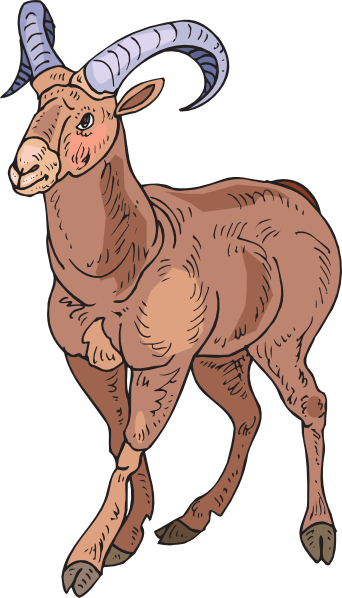 Bighorn Sheep clipart #6, Download drawings
